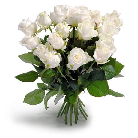 Μπουκέτο με 17 λευκά τριαντάφυλλα - Το φιλί του έρωτα